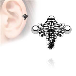 Cartilage piercing do ucha - slon